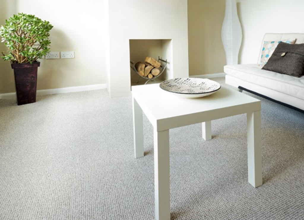 Valor Home Services Carpet