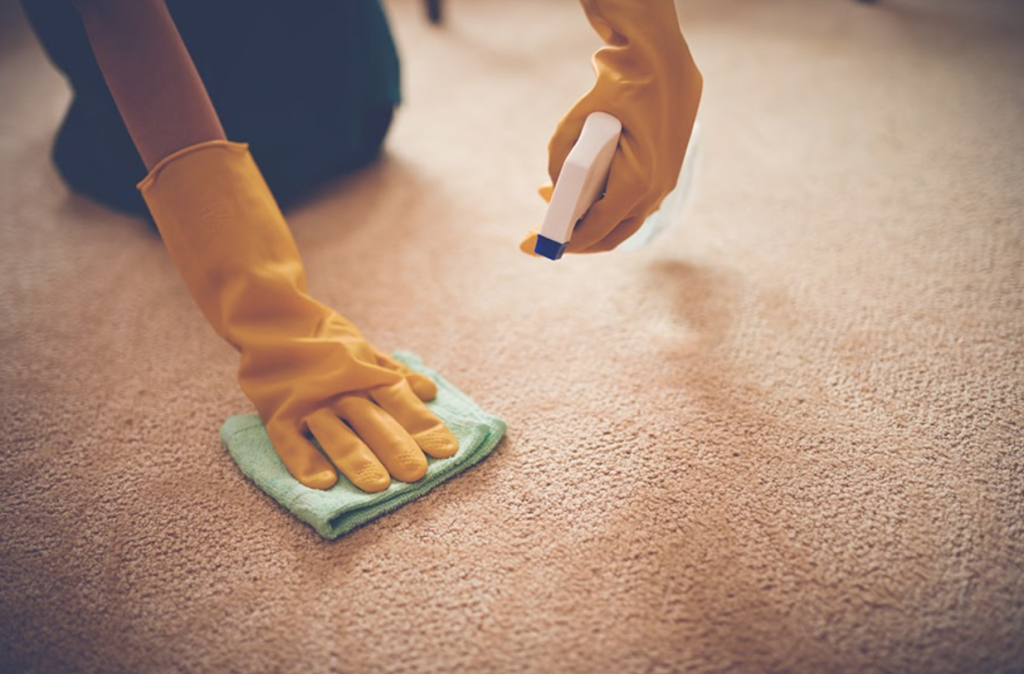 Valor Home Services Carpet Cleaning